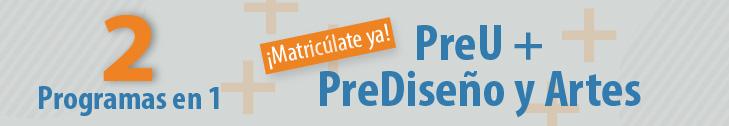 PreU-PreDiseno-2-en-1